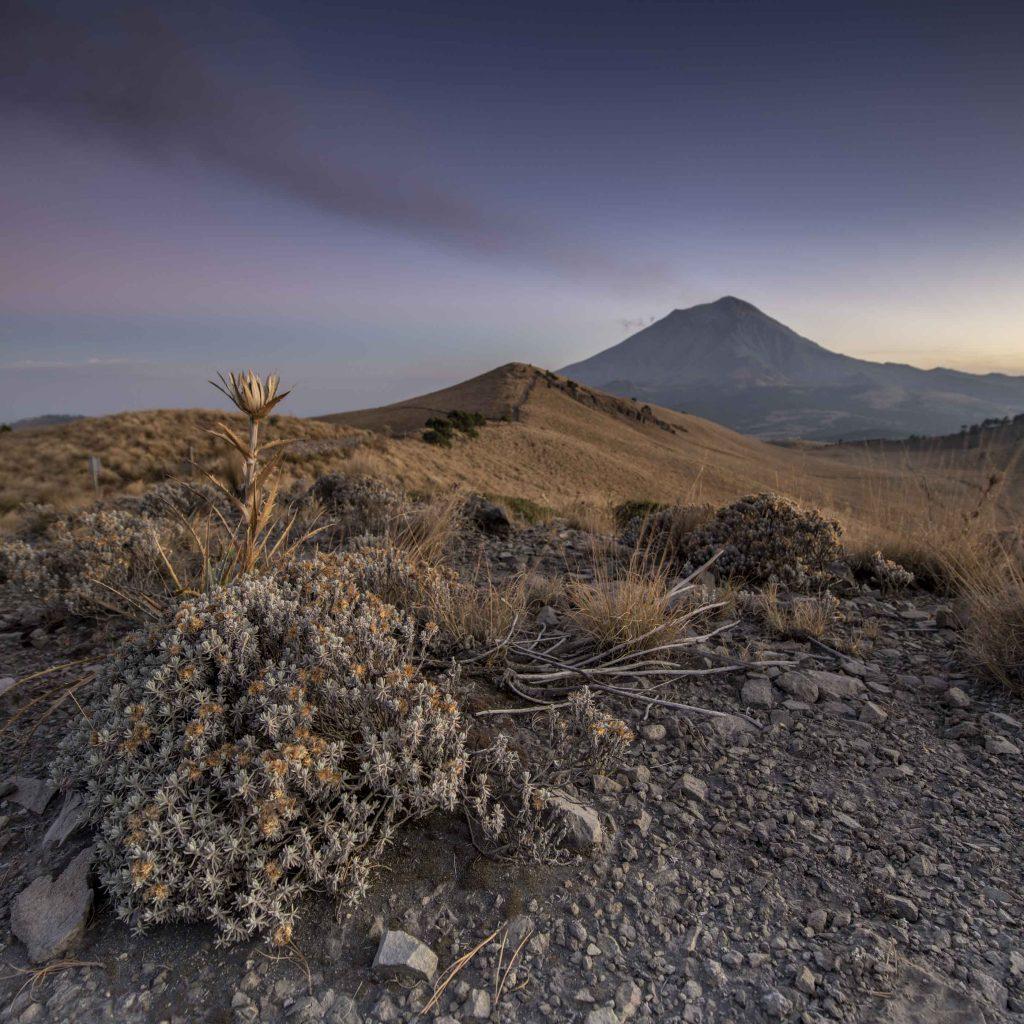 Primera imagen usada para focus stacking del paisaje en el volcan popocatepetl